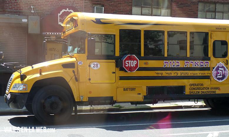 9-bus-judio